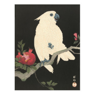JAPANESE COCKATOO Postcard