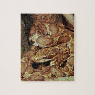 Japanese copperhead jigsaw puzzle