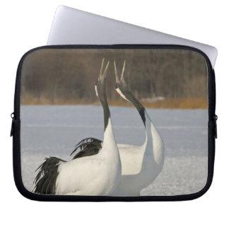 Japanese Cranes dancing on snow Computer Sleeve