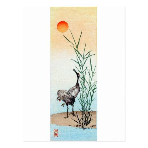 Japanese Cranes no.2 Postcard