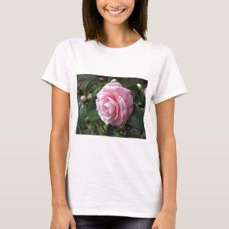 Japanese cultivar of pink Camellia japonica T-Shirt