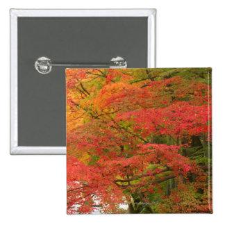 Japanese Fall Foliage Pinback Button