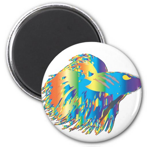 Japanese Fighting Fish 2 Inch Round Magnet