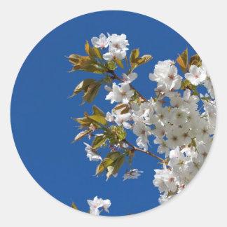 Japanese Flowering Cherry Classic Round Sticker