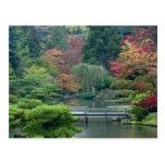 Japanese Garden at the Washington Park Postcards