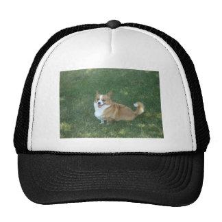 Japanese Garden  Dog Trucker Hat