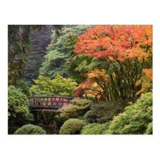 Japanese Garden in Autumn Postcard