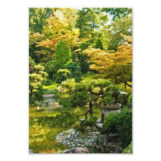 Japanese Garden Photograph