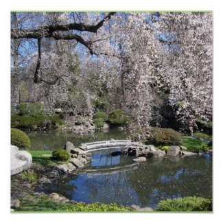 Japanese garden photography poster print