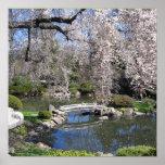 Japanese garden photography poster