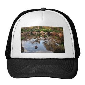 Japanese garden pond and duck trucker hat