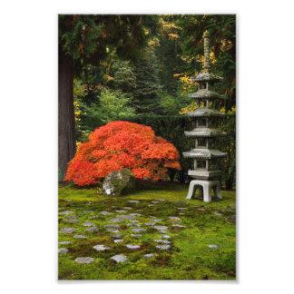 Japanese Garden with Pagoda in Autumn Art Photo