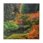 "Japanese Gardens In Autumn In Portland, Oregon 5 Tile<br><div class=""desc"">Chuck Haney / DanitaDelimont.com USA,  North America,  Oregon</div>"