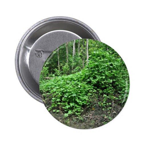 Japanese hops pinback buttons