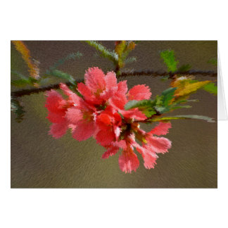 Japanese illusory quince flowering, close-up, card