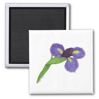 Japanese Iris Blossom 2 Inch Square Magnet
