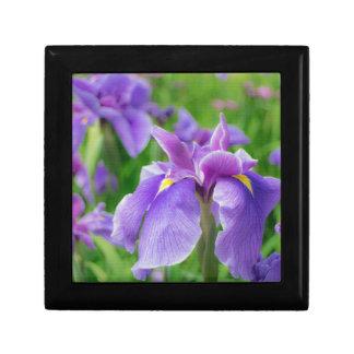 Japanese iris jewelry box