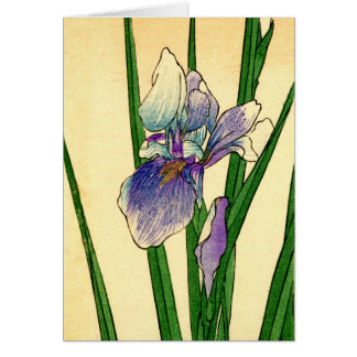 Japanese Iris no.1 Card