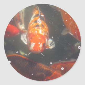 Japanese Koi Fish Classic Round Sticker