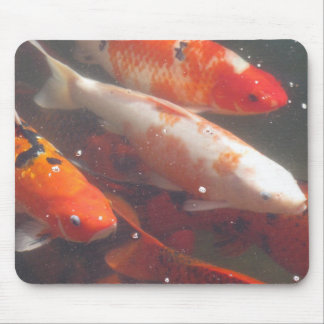Japanese Koi Fish Mouse Pads