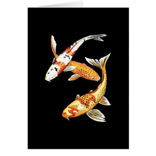 Japanese Koi Goldfish on Black Cards