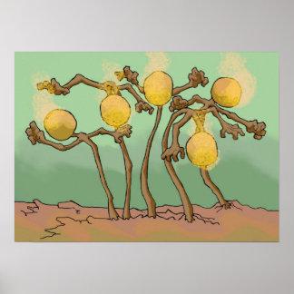 japanese-lantern-slime fungus print