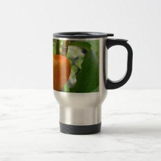 Japanese Lantern Travel Mug