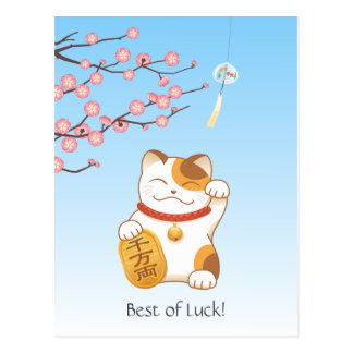 Japanese Lucky Calico Cat, Maneki Neko Postcard