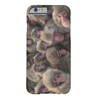 Japanese macaque (Macaca fuscata) huddled Barely There iPhone 6 Case