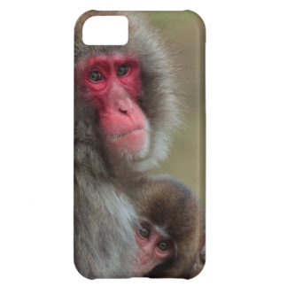 Japanese Macaque Monkeys  iPhone 5 Barely There Cover For iPhone 5C