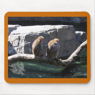 Japanese Macaque Monkeys Mouse Pad