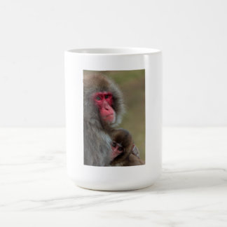 Japanese Macaque Monkeys Mug