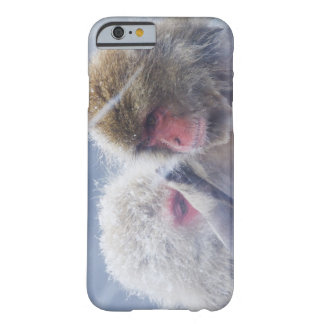 Japanese Macaques (Macaca fuscata) Grooming in Barely There iPhone 6 Case