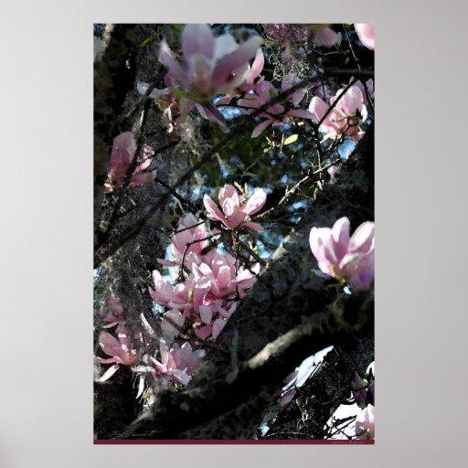 Japanese Magnolia Art Poster