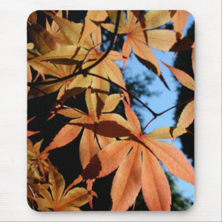 Japanese Maple (2) Mouse Pad