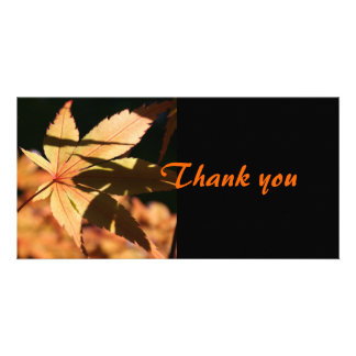 Japanese Maple (2) - Thank you Card Photo Card