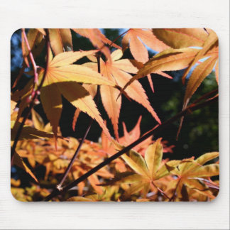 Japanese Maple (3) Mouse Pad