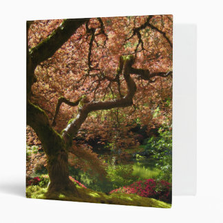Japanese Maple Acer Palmatum Portland Garden 3 Ring Binder