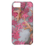 Japanese maple and Oak leaves iPhone 5C Case