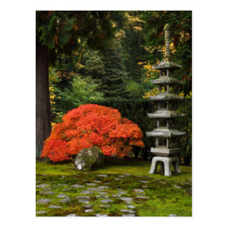 Japanese Maple and Pagoda in a Japanese Garden Postcard