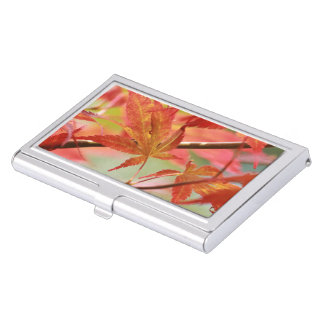 Japanese Maple Case For Business Cards