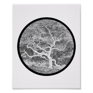Japanese Maple Form Poster