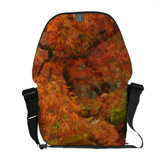 Japanese maple in fall color 2 courier bag