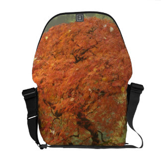 Japanese maple in fall color 3 courier bag