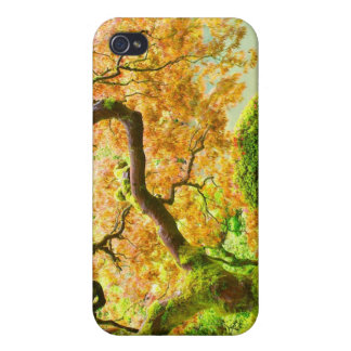 Japanese maple iPhone 4 case