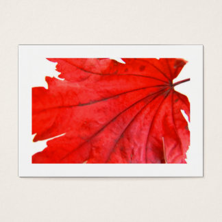 Japanese Maple Leaf (Bordered) Business Card