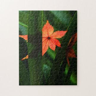 Japanese Maple Leaf Jigsaw Puzzle