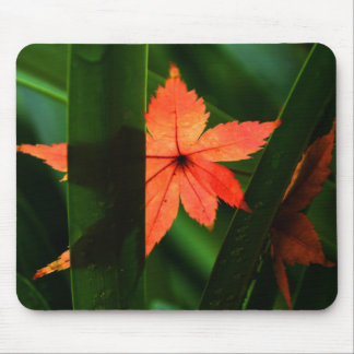 Japanese Maple Leaf Mouse Pad