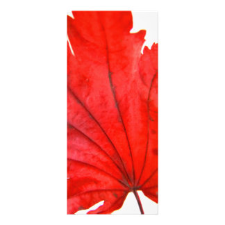 Japanese Maple Leaf Rack Card