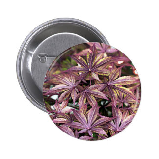 Japanese Maple Leaves Button